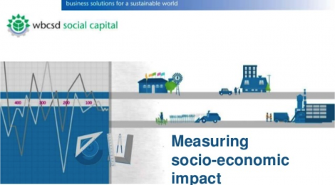 World Business Council for Sustainable Development - a case example