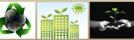 Coordinating social sustainability in Michigan: The Sustainable Michigan Endowed Project (SMEP)