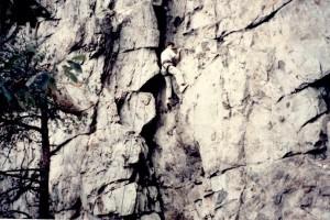 mcgavran_rock climbing