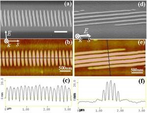 Tang07 Nanotechnology Fig1